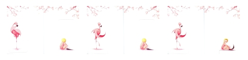 Flamingo Apology